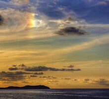 Sun Dog by Tom Gomez