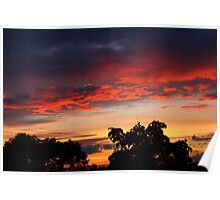 Sunset in Summer Poster