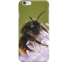 Pollen Covered Bee macro iPhone Case/Skin