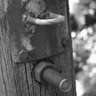 The Old Gate Post by mdench