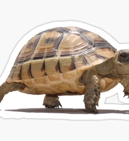 Marching Baby Tortoise Cartoon Vector Isolated Sticker