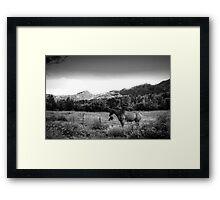 Sundance Framed Print