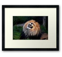 See,I did brush my teeth!!! Framed Print