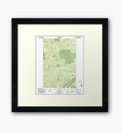 USGS Topo Map Washington State WA Aladdin Mtn 239769 1992 24000 Framed Print