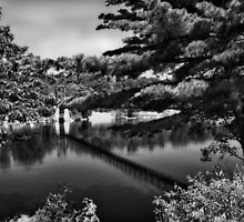 Androscoggin Swing Bridge (Black and White) by Anthony M. Davis