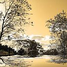 Golden Pond ! by Elfriede Fulda