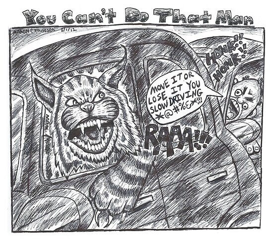 You Can't Do That Man Comic Strip 38 by ACProsser