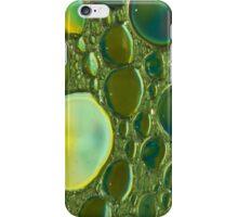 Golden Glow iPhone Case iPhone Case/Skin