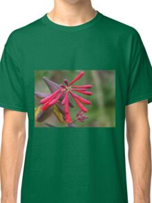 Trumpet Honeysuckle - Buds of Coral Woodbine Classic T-Shirt