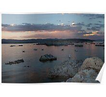 Mono Lake Flocking at Sunset Poster