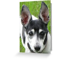 All Ears Greeting Card