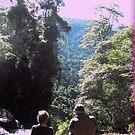 Springbrook falls by MardiGCalero