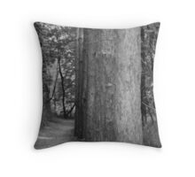 Aligned on a Path Throw Pillow