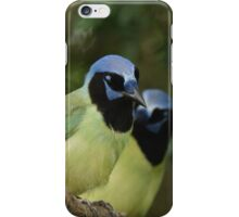 Just a Pair of Green Jays iPhone Case/Skin