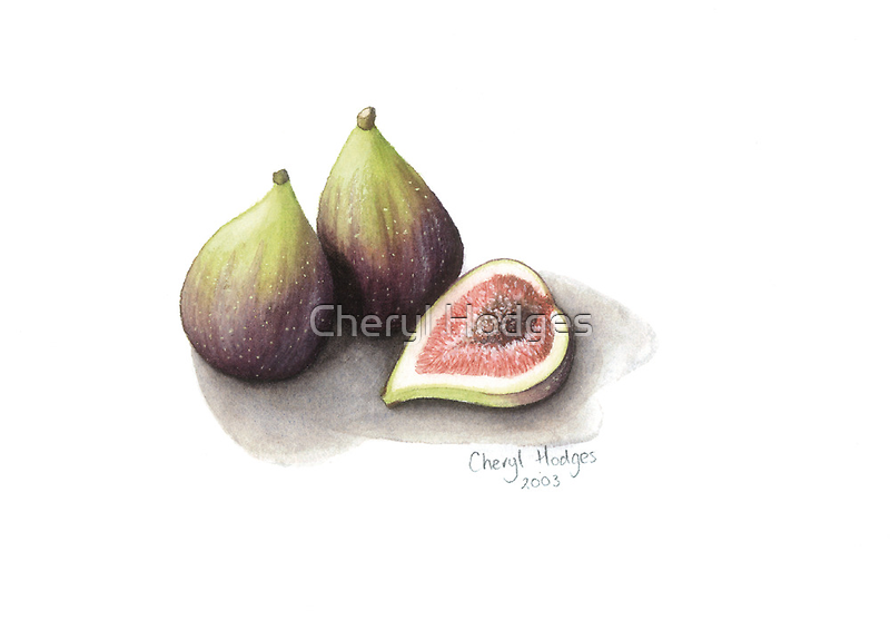 Figs by Cheryl Hodges