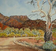 Vulkathuna, Gamon Ranges, Flinders Ranges by Virginia  Coghill