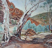 Weetootla Gorge, Gamon Ranges, Flinders Ranges by Virginia  Coghill