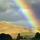 Rainbow by AntonAlberts