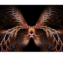 Wing Thing Photographic Print