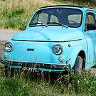 Classic Fiat 500 F by Andrew Jones