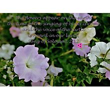 Flowers Appear on the Earth Photographic Print