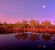 Sunset Glow by Stephen  Nicholson