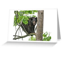 YOU can't get Me! Greeting Card