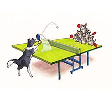 Chinchilla Ping Pong Photographic Print