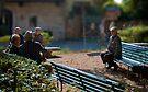 The outsider, Pienza, Tuscany, Italy by Andrew Jones