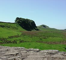 Hadrian's Wall by Ross Sharp