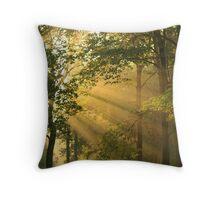 Sunray Bliss Throw Pillow