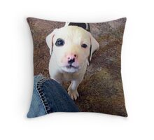 Dexter~ Dedicated to Britani and Your Family Throw Pillow