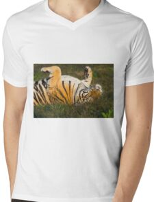 Siberian Tiger rolling in the grass Mens V-Neck T-Shirt