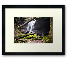 Sheep Skin Hollow Framed Print