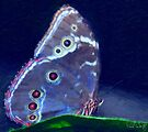 Blue Morpho-Oil Painting Effect by Paul Wolf
