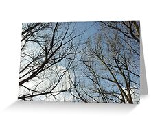 To touch the sky is a wonderful thing Greeting Card
