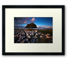 Dales Delight Framed Print