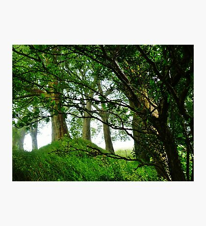 Fort of the Fairies  Photographic Print