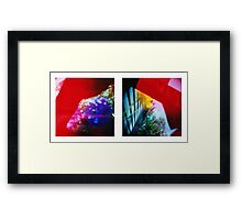 Obscured - 120 Color Holga Diptych  Framed Print