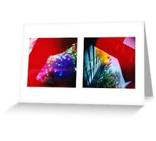 Obscured - 120 Color Holga Diptych  Greeting Card
