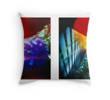 Obscured - 120 Color Holga Diptych  Throw Pillow