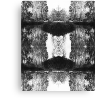 Solitary Twins - Black and White Print Canvas Print