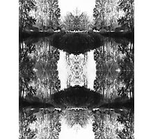 Solitary Twins - Black and White Print Photographic Print