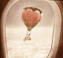 Saturday Dream - A Plane with a View by Paula Belle Flores