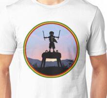 Robin Kid Unisex T-Shirt