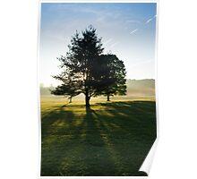 Sun Rise Through the Trees, Cades Cove, Smoky Mountain National Park Poster