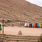 Color in the desert by globeboater