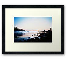 golden swim Framed Print