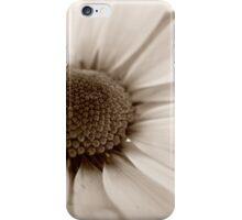 White Chrysanthemum sepia flower iPhone Case/Skin