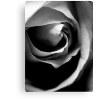 Fragility - Black and White Macro Print Canvas Print